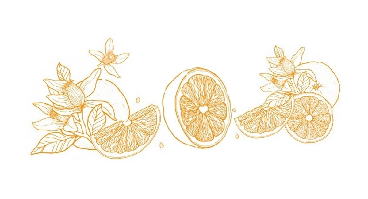 Narancsok web 1